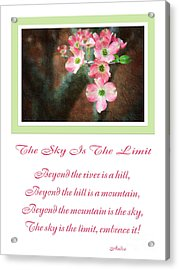 The Sky Is The Limit V 12 Acrylic Print by Andee Design