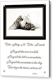 The Sky Is The Limit V 3 Acrylic Print