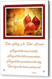 The Sky Is The Limit V 8 Acrylic Print by Andee Design