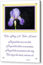 The Sky Is The Limit V 9 Acrylic Print by Andee Design