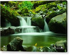 The Small Water Acrylic Print by Jeff Swan