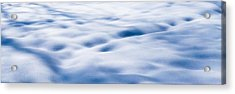The Snow Carpet - Featured 2 Acrylic Print by Alexander Senin