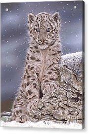 The Snow Prince Acrylic Print