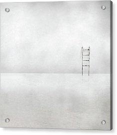 The Social Ladder Acrylic Print by Gilbert Claes