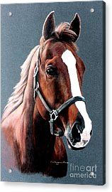 Acrylic Print featuring the painting The Sorrel by DiDi Higginbotham
