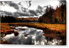 The South End Of Cary Lake Acrylic Print by David Patterson