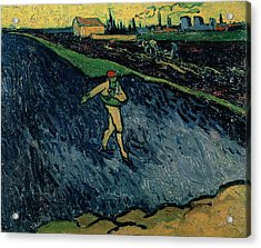 The Sower Acrylic Print by Vincent van Gogh