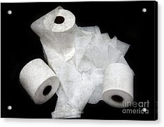 The Spare Rolls 3 - Toilet Paper - Bathroom Design - Restroom - Powder Room Acrylic Print by Andee Design