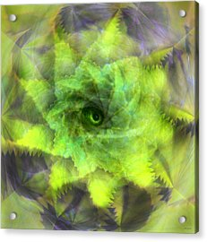 Acrylic Print featuring the digital art The Spirit Of The Jungle by Martina  Rathgens