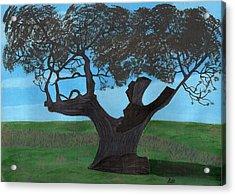 The Split Tree - Bradgate Park Acrylic Print by Bav Patel