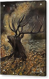 the Stag sitting in the grass oil painting Acrylic Print by Angel  Tarantella