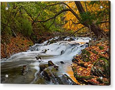 The Still River Acrylic Print by Bill Wakeley