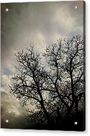 The Storm Acrylic Print by Lucy D