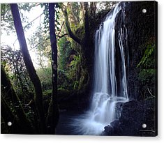 The Stream After Heavy Rain Acrylic Print