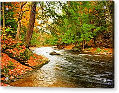 Acrylic Print featuring the photograph The Stream by Bill Howard