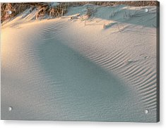 The Subtlety Of Shadow  Acrylic Print by JC Findley