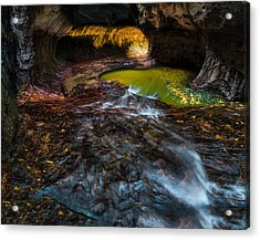 The Subway At Zion National Park Acrylic Print by Larry Marshall