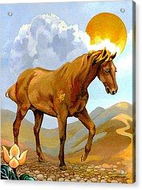 The Sun King Acrylic Print by Patricia Howitt