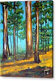 The Sun Slid Down The Ridge Acrylic Print
