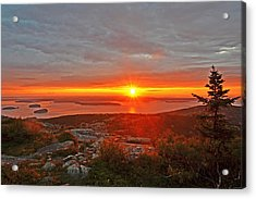 The Sunrise From Cadillac Mountain In Acadia National Park Acrylic Print