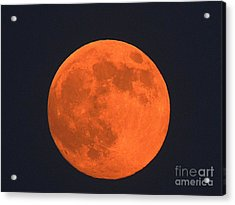 The Super Moon Acrylic Print by Marcia Lee Jones