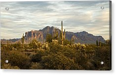 The Superstition Mountains Acrylic Print