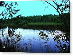 Acrylic Print featuring the photograph The  Swamp by Jason Lees