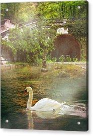 The Swan Lake Acrylic Print by Pati Photography