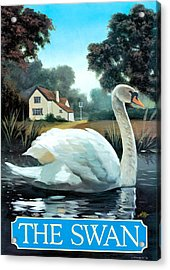 The Swan Acrylic Print by Peter Green