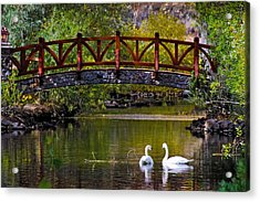 Acrylic Print featuring the photograph The Swans At Caughlin Ranch by Janis Knight