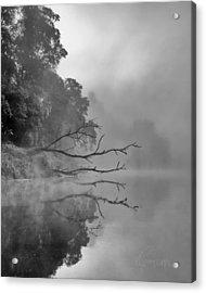 The Temptation Acrylic Print by Tom Cameron