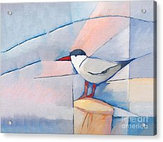 The Tern Acrylic Print