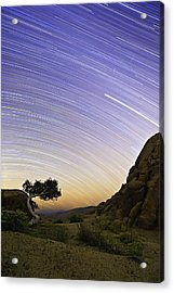 The Test Of Time Acrylic Print by Basie Van Zyl