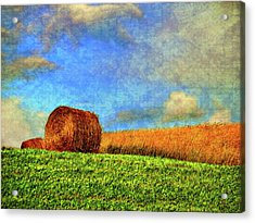 The Textures Of Autumn Acrylic Print by Steve Harrington