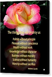 Acrylic Print featuring the photograph The Things That Will Destroy Us by George Bostian