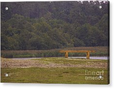 The Thinking Bench Acrylic Print by Michelle Orai