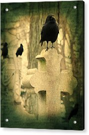 The Three Graveyard Crows Acrylic Print by Gothicrow Images