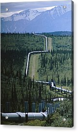 The Trans-alaska Pipeline Cuts Acrylic Print by Melissa Farlow