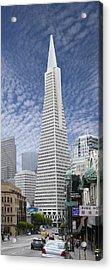 The Transamerica Pyramid - San Francisco Acrylic Print by Mike McGlothlen