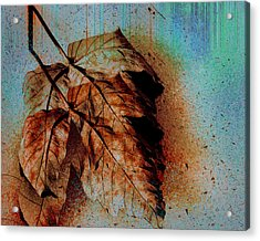 The Transience Of All Things Acrylic Print by Martina  Rathgens