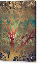 The Tree Called Beautiful Acrylic Print by Gray  Artus