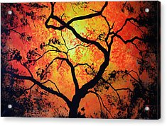 The Tree Of Life #1 Acrylic Print