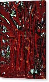 The Tree Spirit Acrylic Print