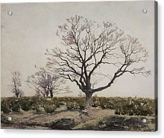 The Tree  Acrylic Print by Henri Duhem
