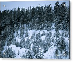The Trees Of The Snowy Hill Acrylic Print