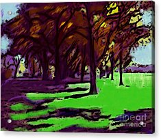The Trees Acrylic Print by Susan Townsend