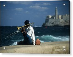 The Trombonist Acrylic Print by James Brunker