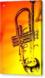 The Trumpet Acrylic Print by Karol Livote