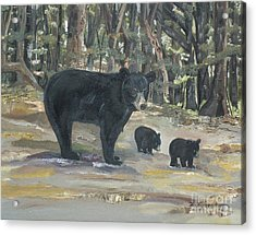 Acrylic Print featuring the painting Cubs - Bears - Goldilocks And The Three Bears by Jan Dappen
