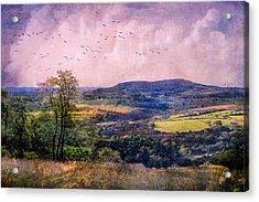 The Valley Acrylic Print by John Rivera